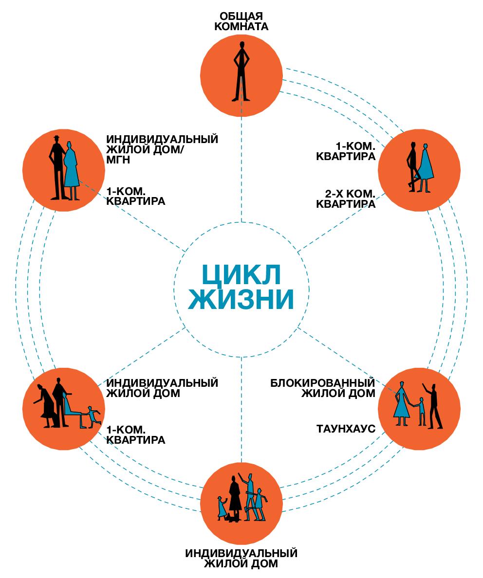 циклы жизни картинки слова